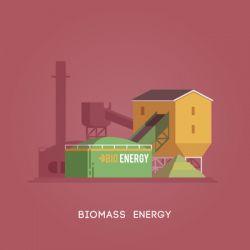 Vector flat illustration. Alternative sources of energy. Green energy. Biomass energy.